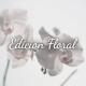 Don Algodon Ambients Edición Floral